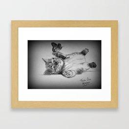 Kitten catching the butterfly Framed Art Print