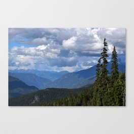 Muted Echo Canvas Print