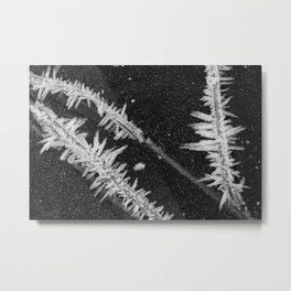 Icy Days NO2 Metal Print