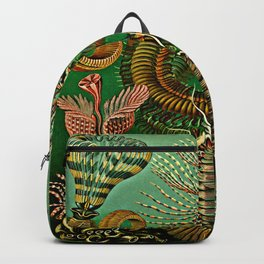 Chaetopoda Backpack