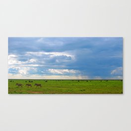 Zebra crossing Ndutu Canvas Print