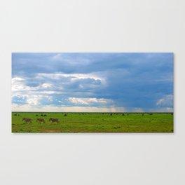 Zebra crossing Ndutu Canvas Print