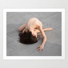 Erica at sunset, 2016 Art Print