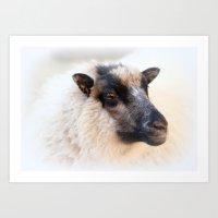 sheep Art Prints featuring sheep by Bunny Noir
