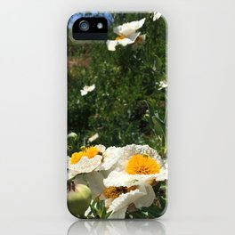 Fried Egg Poppies iPhone Case