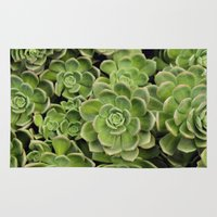 succulent Area & Throw Rugs featuring Succulent by Cynthia del Rio