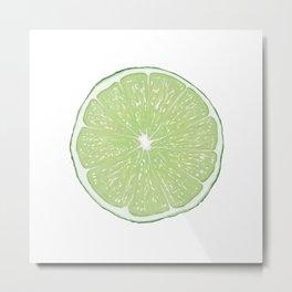 Slice of Lime Metal Print