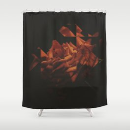 Fractions 18 Shower Curtain