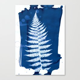 Fern I - Cyanotype Canvas Print