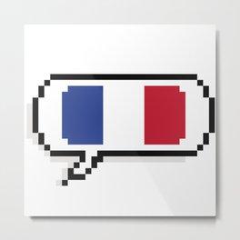 French flag Metal Print