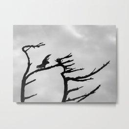 A Peregrine Falcon Mimicks Tree Branches Metal Print
