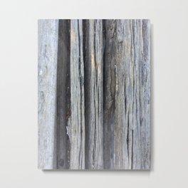 Wood -Saguaro Skeleton Metal Print