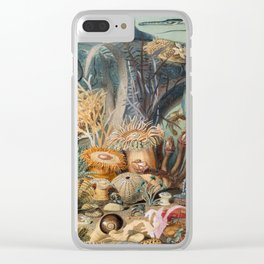 Ocean Life Clear iPhone Case