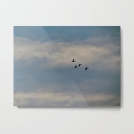 Flying Geese Silhouettes (2) Metal Print