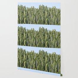 Cactus Jungle Wallpaper