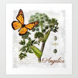 Angelica Herb Botanical Art Print