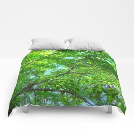 Canopy of Green, Leafy Branches with Blue Sky Comforters