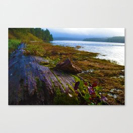 Ucluelet Inlet on an early fall morning Canvas Print