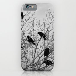 Murder Of Crows - Two iPhone Case