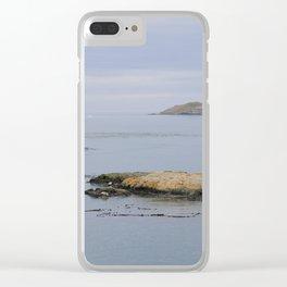 Harbor seals enjoy the San Juans Clear iPhone Case