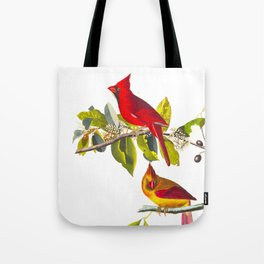 Cardinal Vintage Bird Illustration Tote Bag