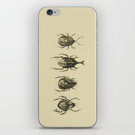 Beetle Morphology iPhone Skin