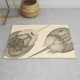 Horseshoe Crabs Rug