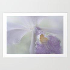 Beauty in a Whisper Art Print