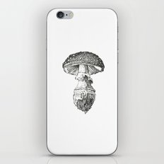 Amanita Muscaria Mushroom Study iPhone & iPod Skin
