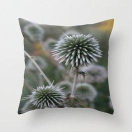 Macro Seed Head of Round Headed Garlic  Throw Pillow