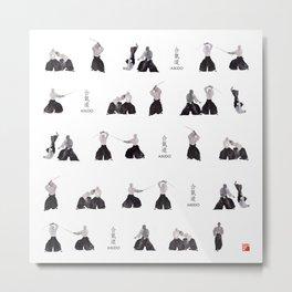 Aikido by yoonhyehe Metal Print
