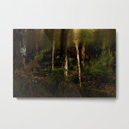 New Hampshire Woodland Reflections Metal Print