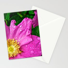 Morning Dew Busy Bee - The Peace Collection Stationery Cards
