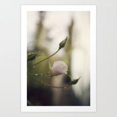 Photobomb {hi!} Art Print