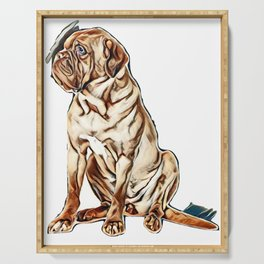 Beautiful dog of French Mastiff / Dogue De Bordeaux breed sits in studio looking aside in studio aga Serving Tray