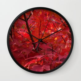 Red Japanese Maple in Fall Wall Clock
