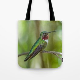 Perched Hummingbird Tote Bag