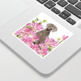 Weimaraner Lotos Flowers Sticker