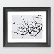 Winter's Reach Framed Art Print