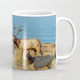 Tule Elk Herd Coffee Mug