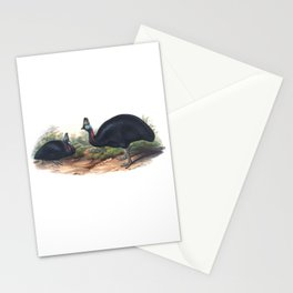 Southern Cassowary, tropical bird in the nature of Australia, New Zealand & Indonesia Stationery Cards