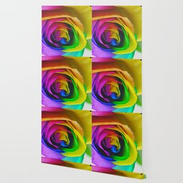 Rainbow Rose 23 Wallpaper