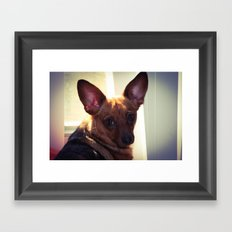 Perceptive  Framed Art Print