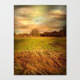 Windblown Field Canvas Print