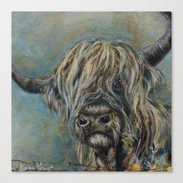 Highland Coo Canvas Print