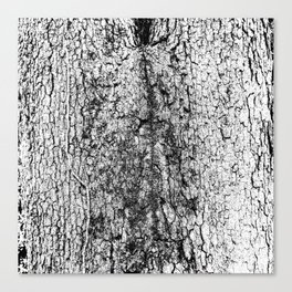 tree crotch in black and white Canvas Print