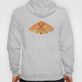Spiny Oakworm Moth (Anisota stigma) Hoody