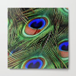 Peacock Feathers 10 Metal Print