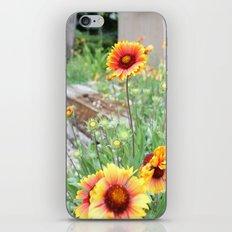 Blanket flowers iPhone & iPod Skin