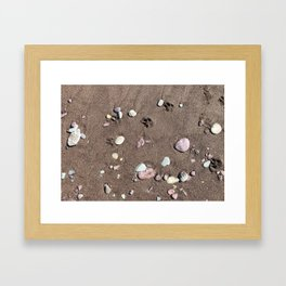 Paw prints on the beach Framed Art Print
